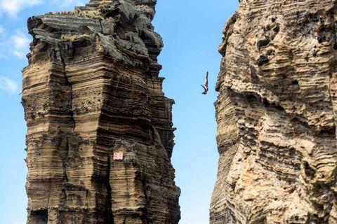 Rock, Formation, Tree, Geology, Outcrop, Plant, Klippe, Trunk, Escarpment, Cliff,