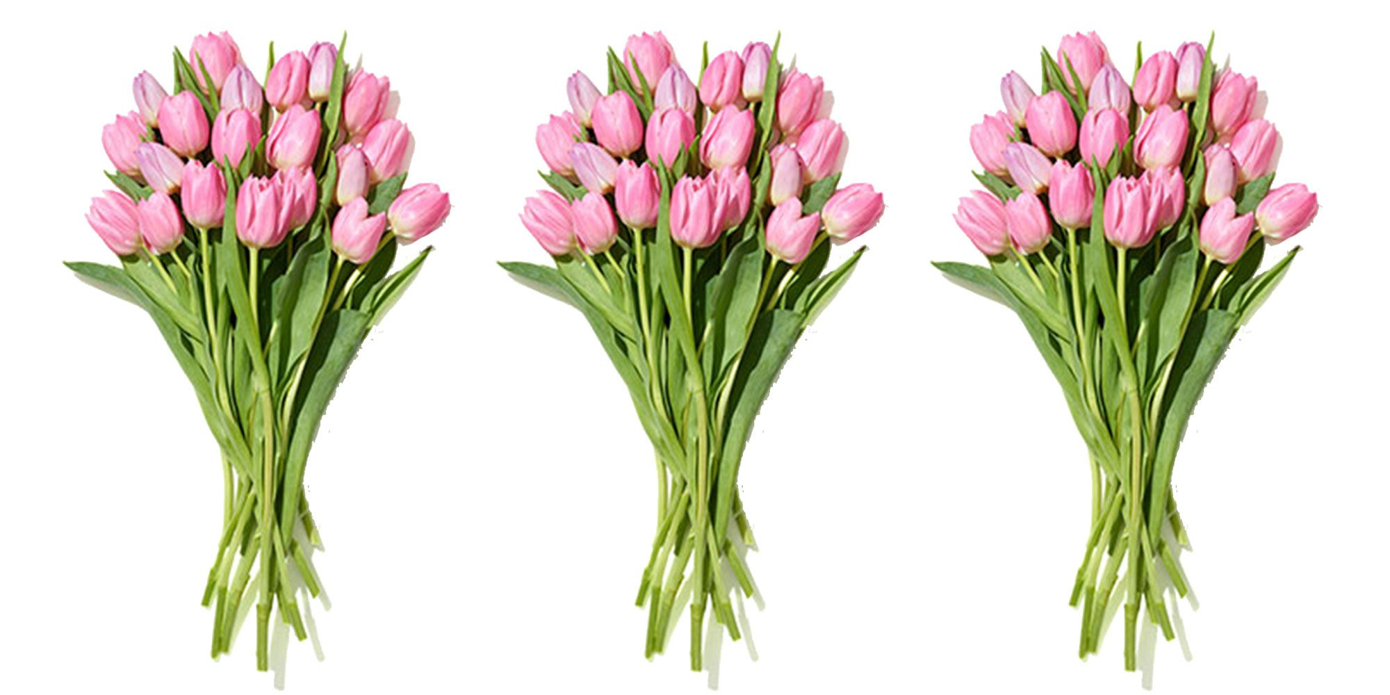 Whole Foods Is Selling A 20-Stem Bunch Of Tulips For Just $10 This Week