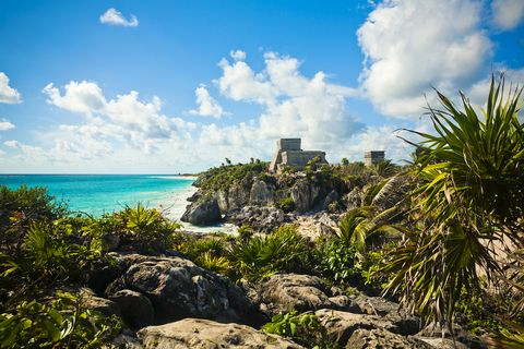 Vegetation, Nature, Sky, Tropics, Shore, Natural landscape, Sea, Daytime, Blue, Ocean,
