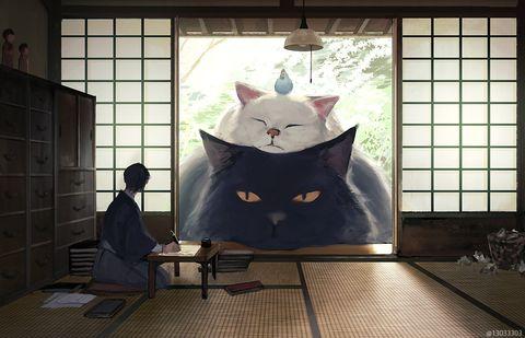 我養了一隻超巨大的貓!日本女孩創造了「人類與巨型寵物」生活的世界,這麼大一坨毛球好暖、好軟啊⋯⋯