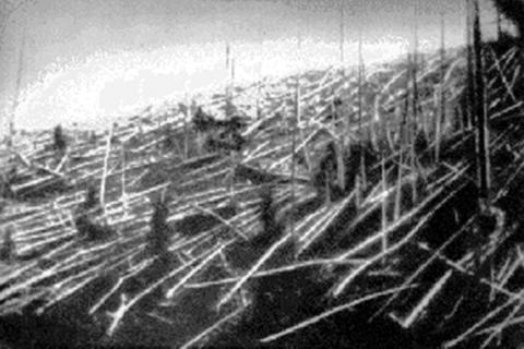 fallen trees at tunguska in 1927