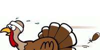 Running Turkey Clip Art