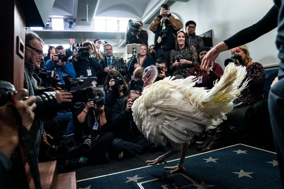 So, What's the History Behind the Annual Turkey Pardon?