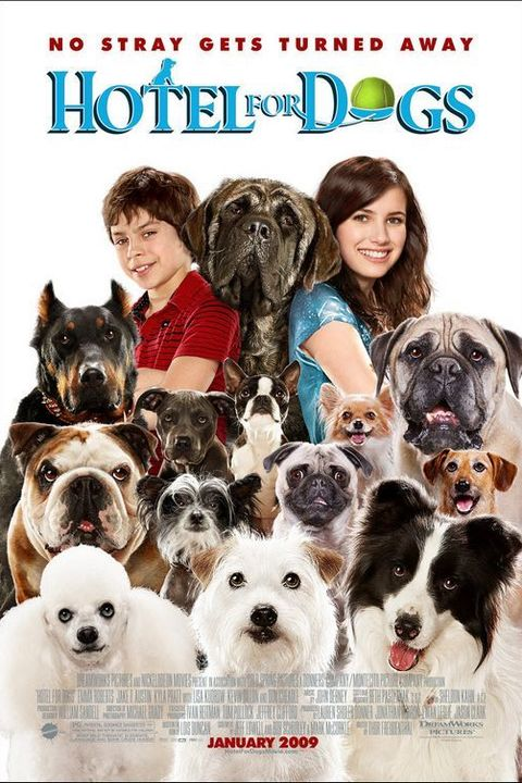 tween movies - Hotel for Dogs