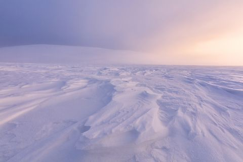 Twilight on frozen landscape, Lapland, Finland