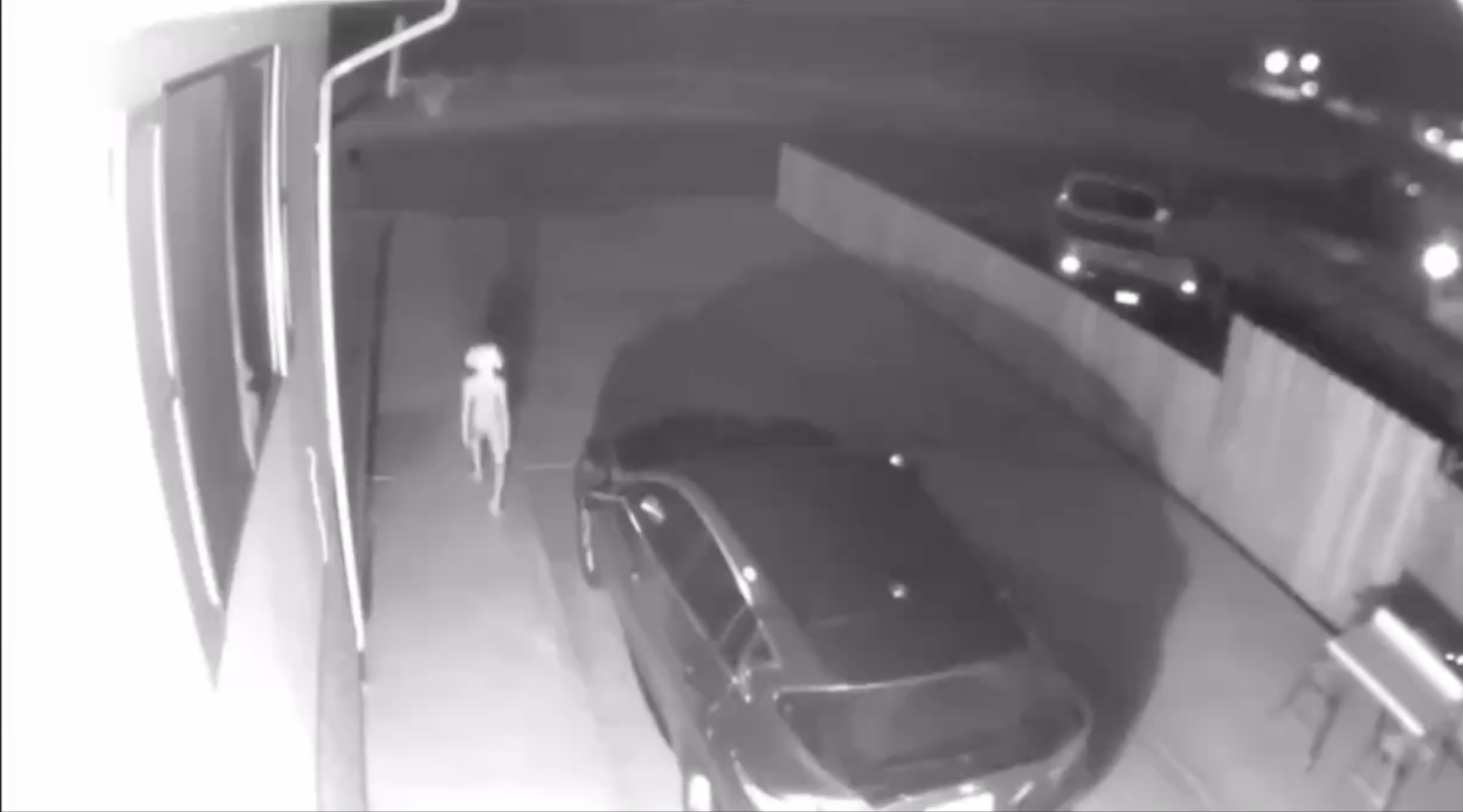 Home Security Camera Shows Alien Lurking in Driveway and the