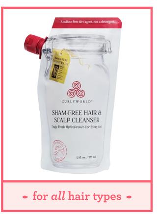 curlyworld sham free hair  scalp cleanser