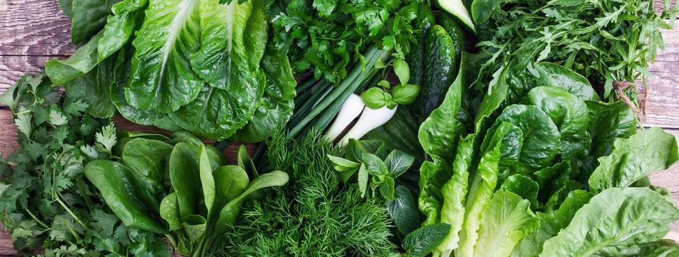 Different Types of Lettuce to Spice Up Your Salad Recipes