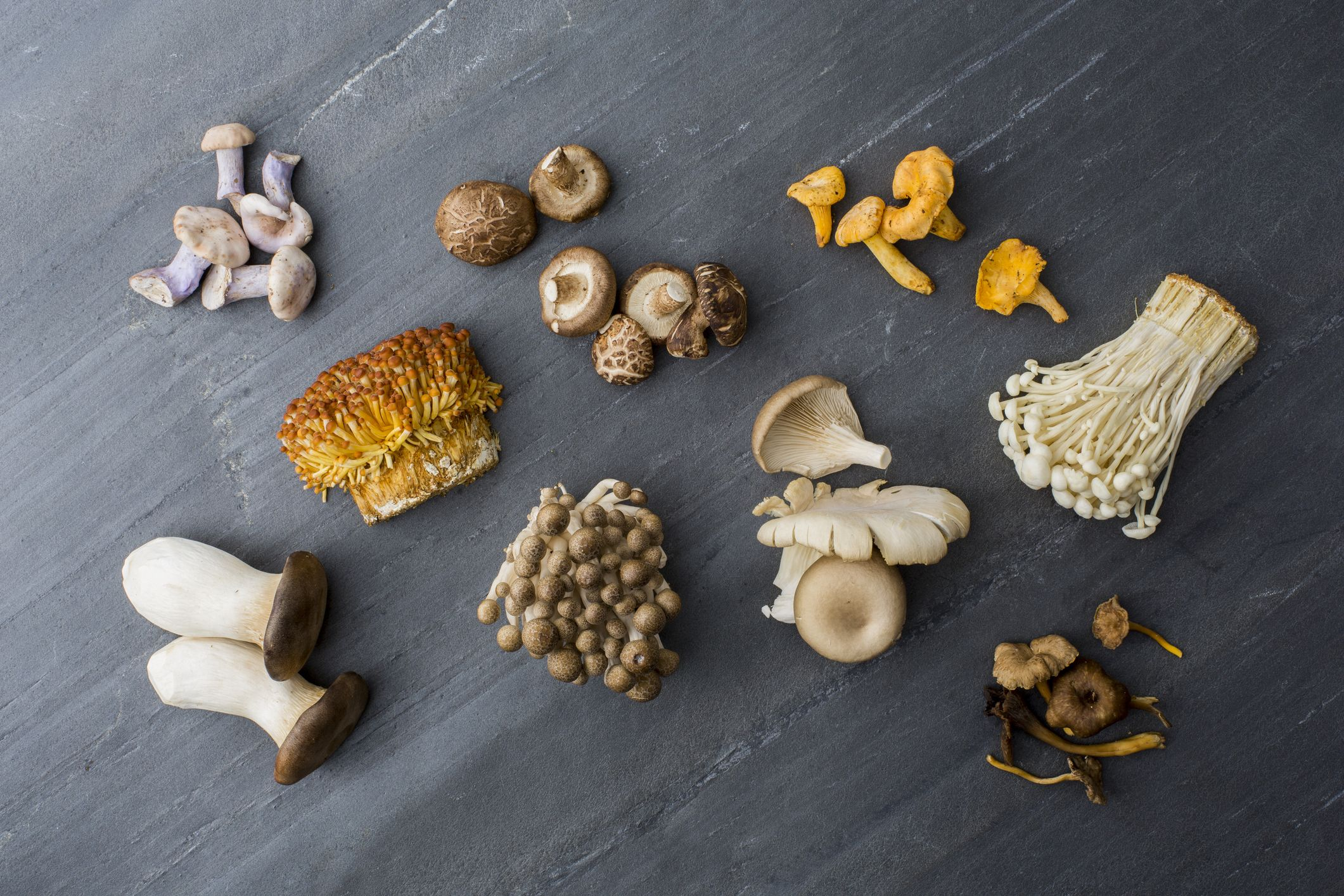 12 of the Most Common Types of Mushrooms
