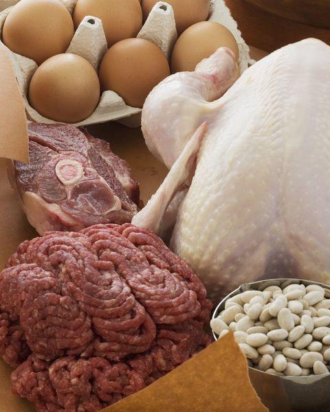 食べ物 タンパク質 の