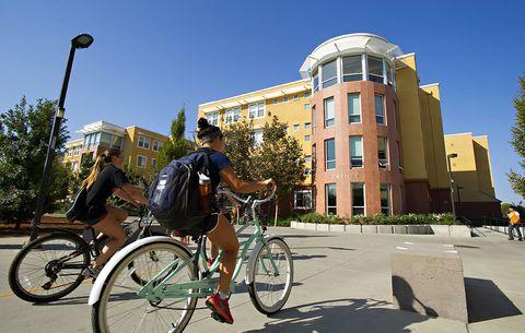 University of California, Davis, bikes, cycling commuting