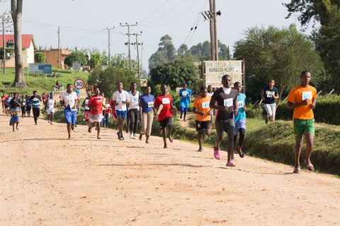 Running, Recreation, Cross country running, Community, Athlete, Sports, Fun, Exercise, Tree, Athletics,