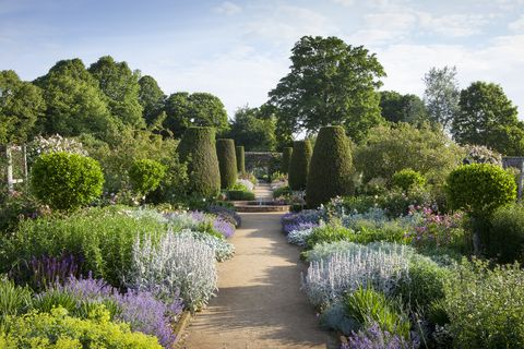 uk gardens   path through the rose garden in june at mottisfont, hampshire, with fountain and yew topiary pillars