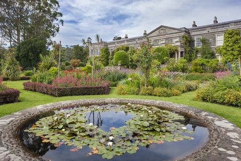 The 10 best UK gardens and top ways to visit them