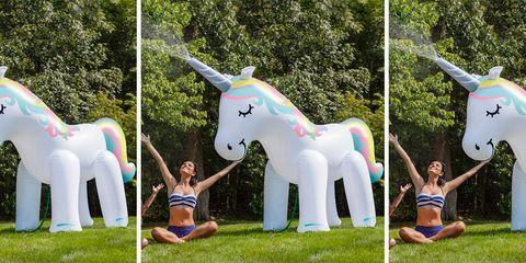 Unicorn, Games, Fictional character, Inflatable, Horse, Fun, Mane, Recreation, Leisure, Art,
