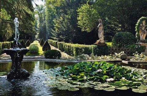 Garden, Nature, Natural landscape, Water, Pond, Vegetation, Tree, Botanical garden, Botany, Plant,