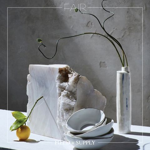 White, Still life photography, Still life, Room, Photography, Vase, Plant, Ikebana, Ceramic, Flowerpot,