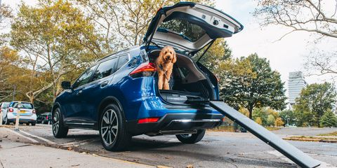 Nissan\'s Rogue Dogue Is Better for Dogs Than It Is for People