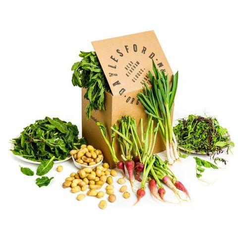 Natural foods, Food, Vegetable, Plant, Leaf vegetable, Superfood, Vegan nutrition, Ingredient, Produce, Herbal,