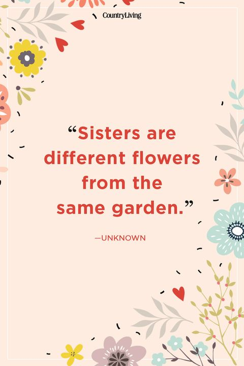 20 Best Sister Quotes - Quotes About Sisters