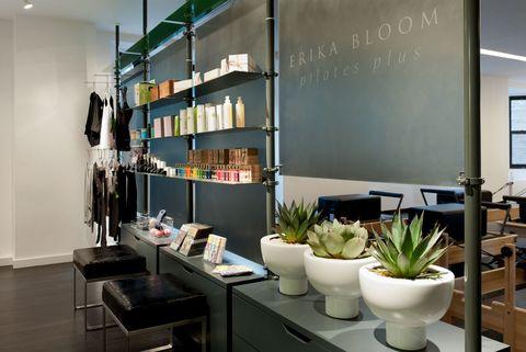 Interior design, Building, Shelf, Furniture, Shelving, Room, Architecture, Houseplant, Design, Table,