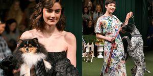 【紐約時裝週】到底是時裝秀還是狗狗展?Lela Rose 秋冬系列的狗狗印花融化了少女心!