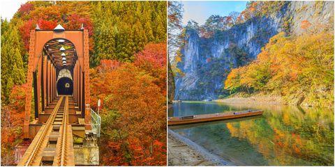 Nature, Natural landscape, Tree, Yellow, State park, Autumn, Landscape, Reflection, National park, Plant,