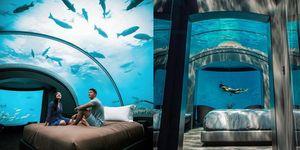 我要當一天的美人魚!馬爾地夫第一間「海底飯店」The Muraka,可以直接在房間外浮潛!