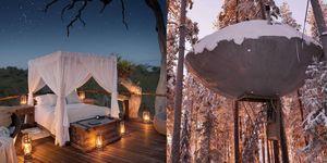 全球最美的十間「樹屋」住宿!坐在溫暖的屋內、望向窗外的秘境,就是要這樣完全放空的旅行!