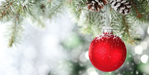 ade52d98ae 19 Fun Facts You Probably Didn't Know About Christmas