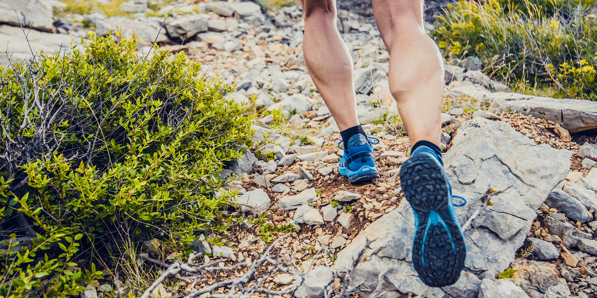 11 Best Trail Running Shoes for Men to Take on Any Terrain 2020