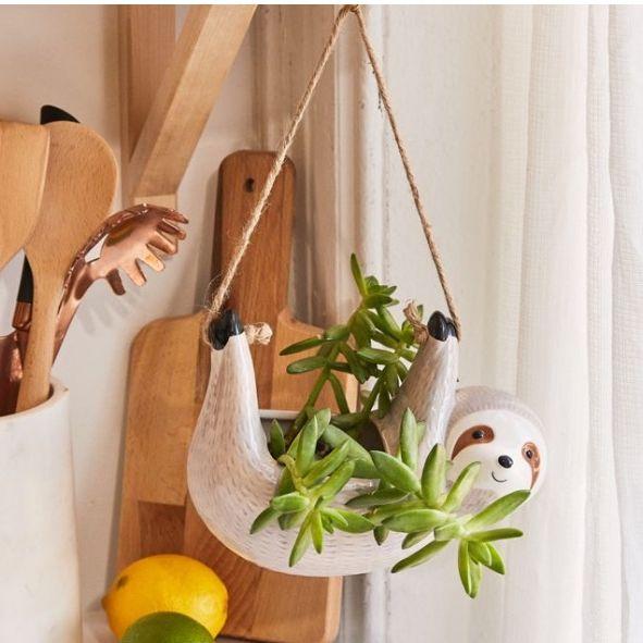 hanging sloth planter and colorful print