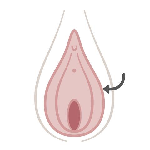 zwei vaginas doppel pussy