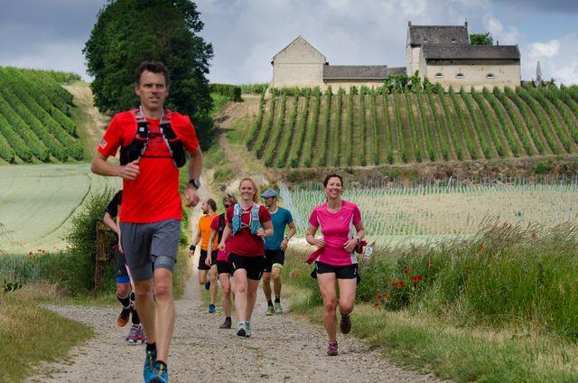 wijngaarden hardlopen groep