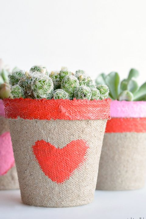 valentines day crafts - succulent holder