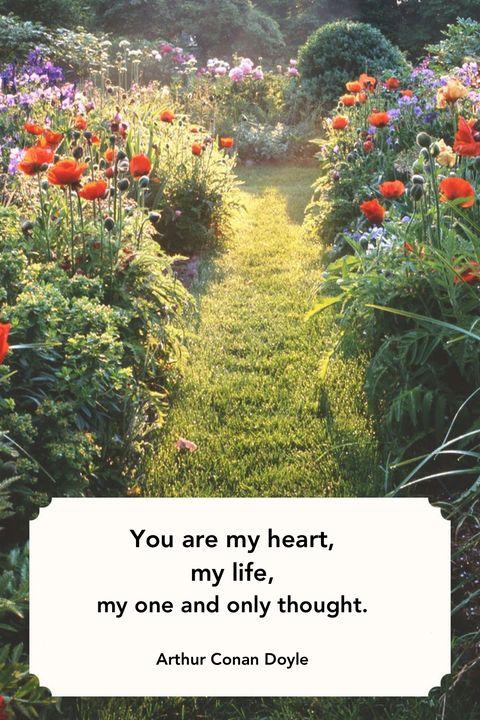 Arthur Conan Doyle Valentines Day Quotes