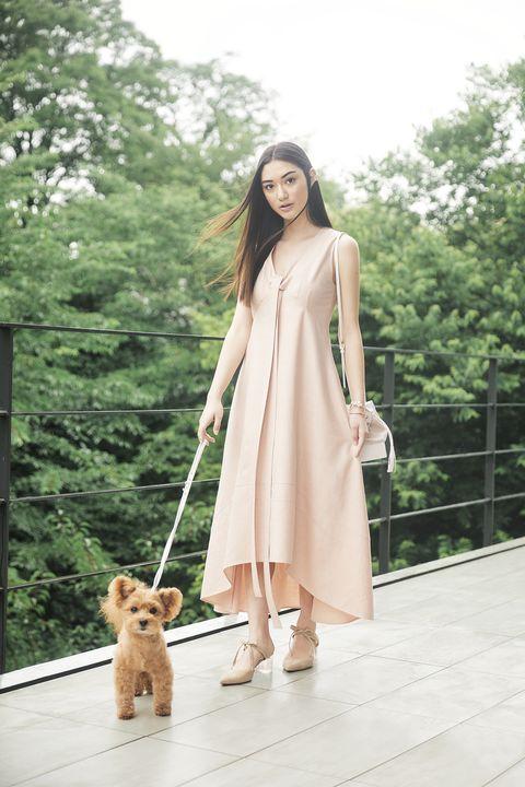 モデルと犬の画像