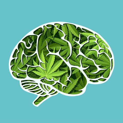 Vector of a human brain made of marijuana leaves