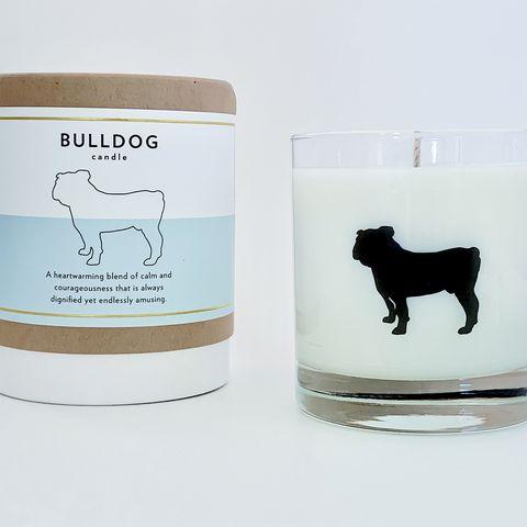 Vela aromática inspirada en la raza bulldog