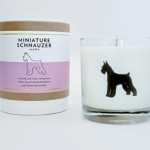Vela aromática inspirada en la raza schnauzer