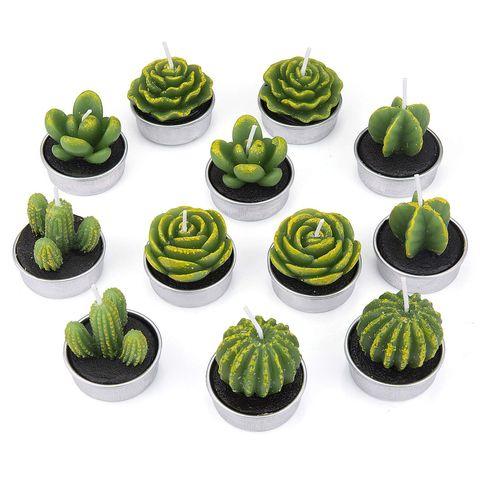 Velas con forma de planta
