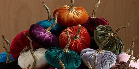 Winter squash, Calabaza, Pumpkin, Vegetable, Cucurbita, Still life, Still life photography, Gourd, Plant, Fruit,