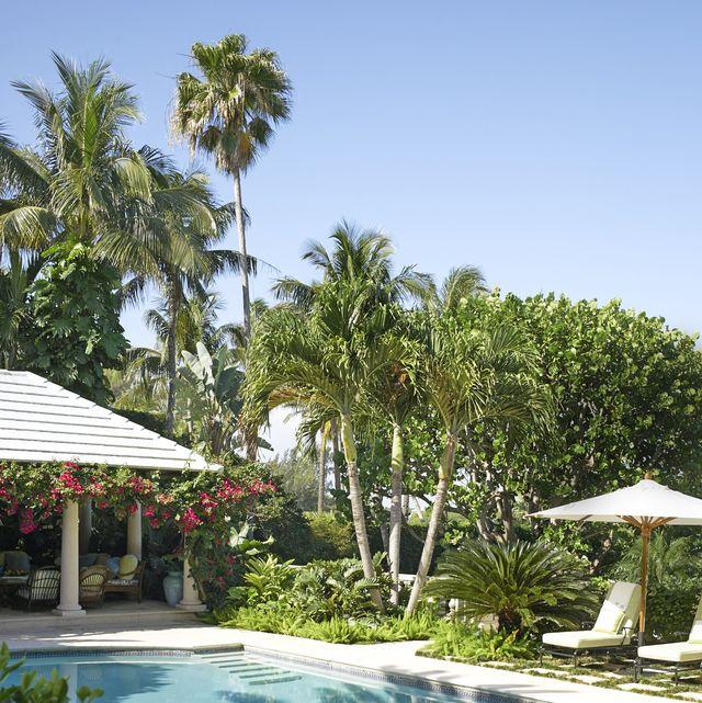 palm beach patio umbrellas