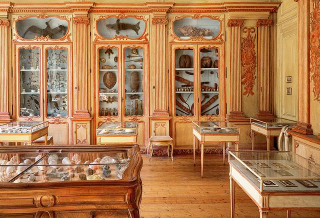 cabinet d'histoire naturelle de clement lafaille and das mineralian kabinett