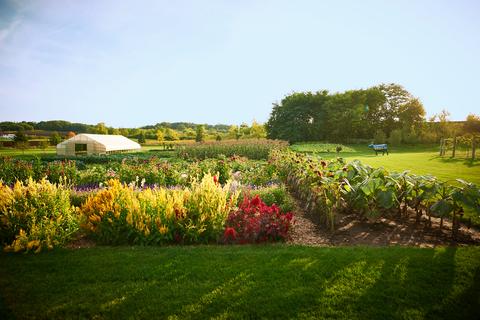 vegetable garden ideas overall