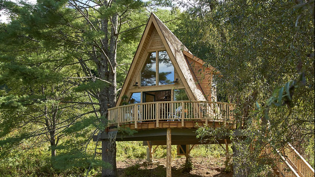 Why Everyone's Dreaming About Living in the Trees