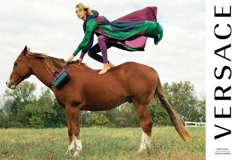 Human, Organism, Brown, Horse supplies, Bridle, Halter, Horse, Rein, Vertebrate, Natural landscape,