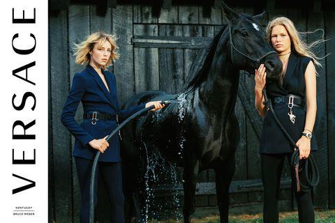 Human, Horse, Horse supplies, Horse tack, Interaction, Liver, Working animal, Mane, Blazer, Bridle,