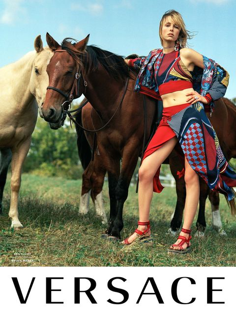 Human, Horse, Bridle, Horse supplies, People in nature, Working animal, Halter, Horse tack, Sorrel, Grassland,