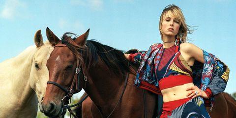 Horse, Halter, Mammal, Horse tack, Rein, Bridle, Working animal, Liver, Horse supplies, Saddle,